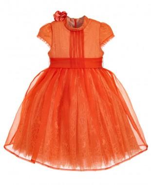 橙色欧根纱小花裙短袖蕾丝裙花童裙礼服