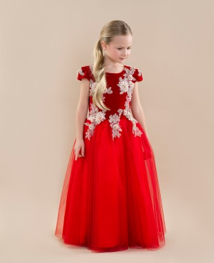蕾丝花红色金丝绒网纱裙短袖长裙